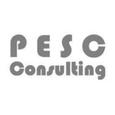 PESC Consulting